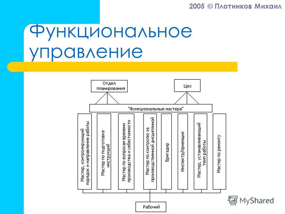 2005 Плотников Михаил Функциональное управление