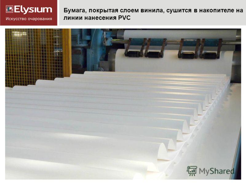 Бумага, покрытая слоем винила, сушится в накопителе на линии нанесения PVC