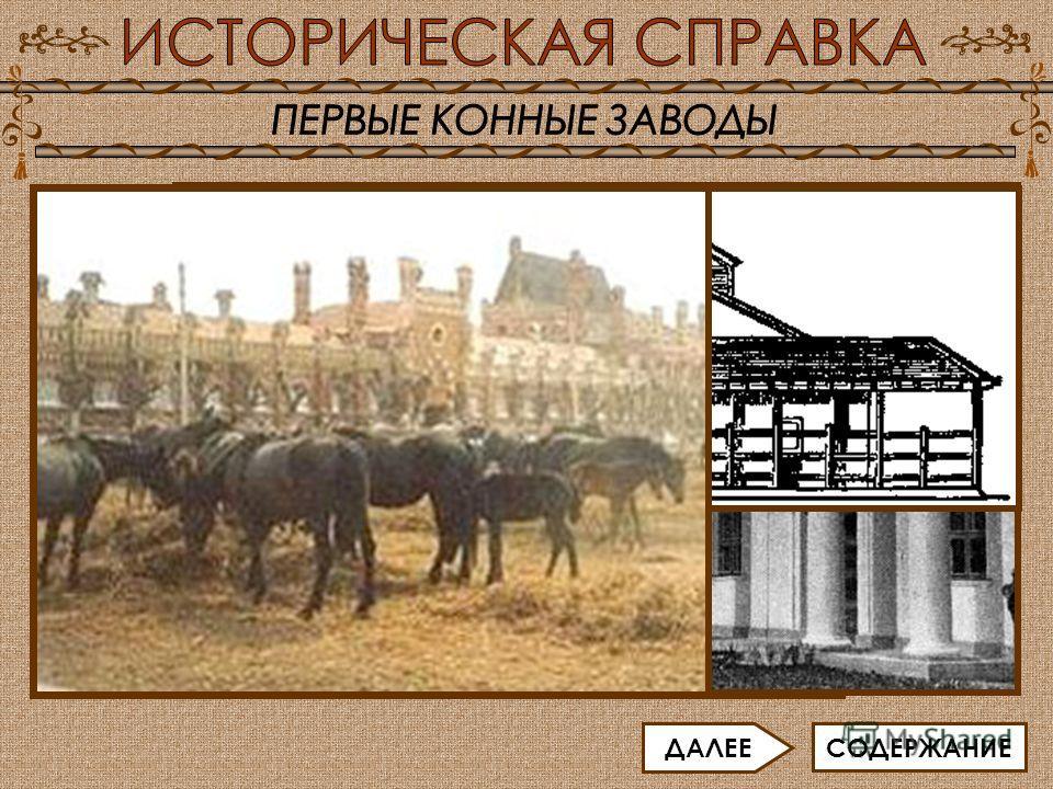 Выведением различных пород лошадей занимаются в специальных заведениях - так называемых конных заводах. К XI - XII векам относят становление коннозаводства в Западной Европе. В средневековой Европе появились первые специальные хозяйства по разведению