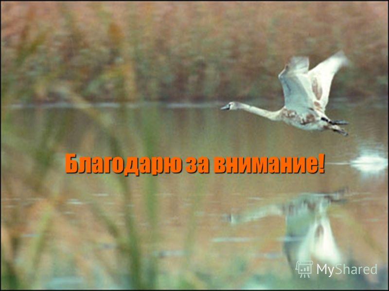 02.09.20129 Благодарю за внимание!