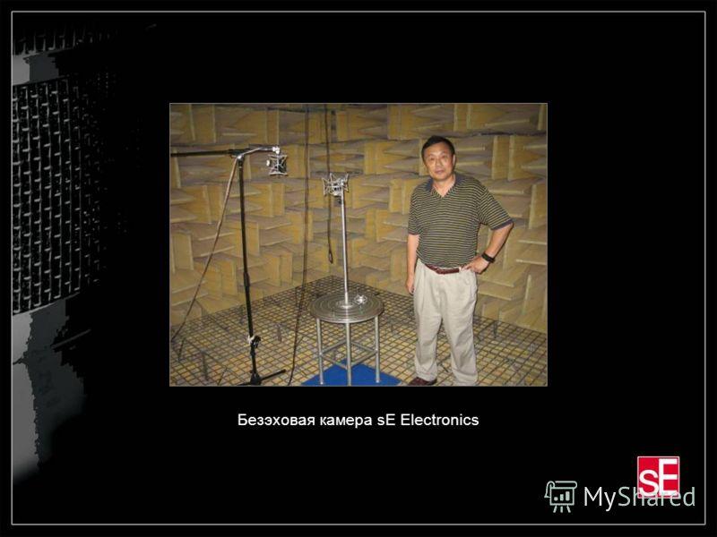 Безэховая камера sE Electronics
