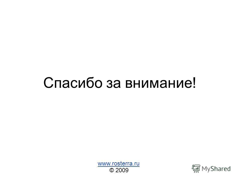 Спасибо за внимание! © 2009 www.rosterra.ru