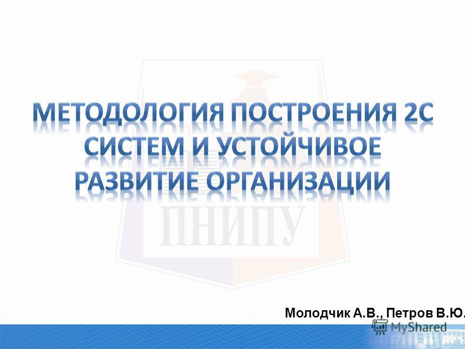 Молодчик А.В., Петров В.Ю.