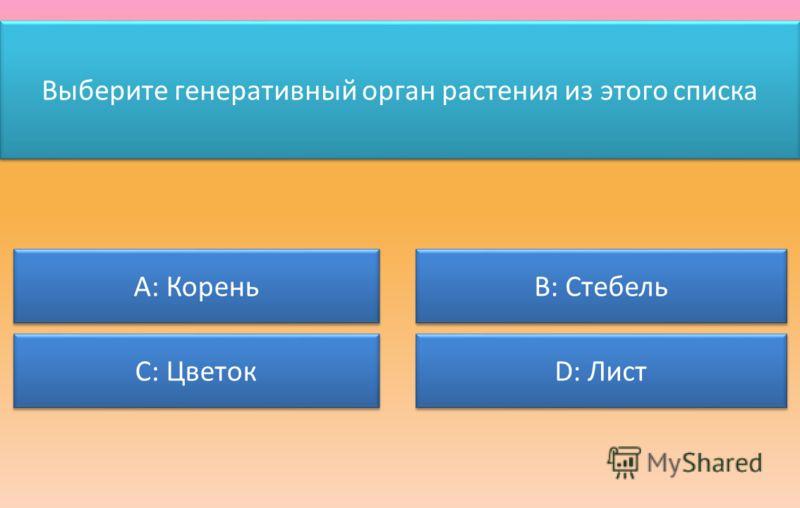Выберите генеративный орган растения из этого списка А: Корень С: Цветок В: Стебель D: Лист