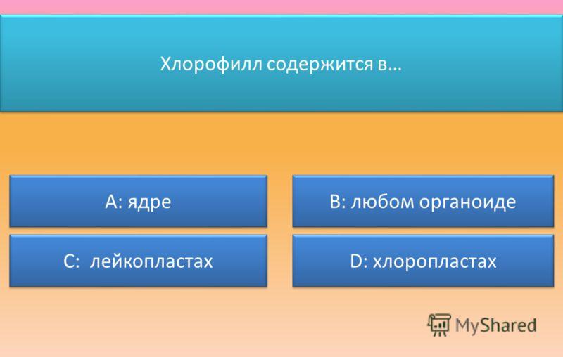 Хлорофилл содержится в… А: ядре С: лейкопластах В: любом органоиде D: хлоропластах