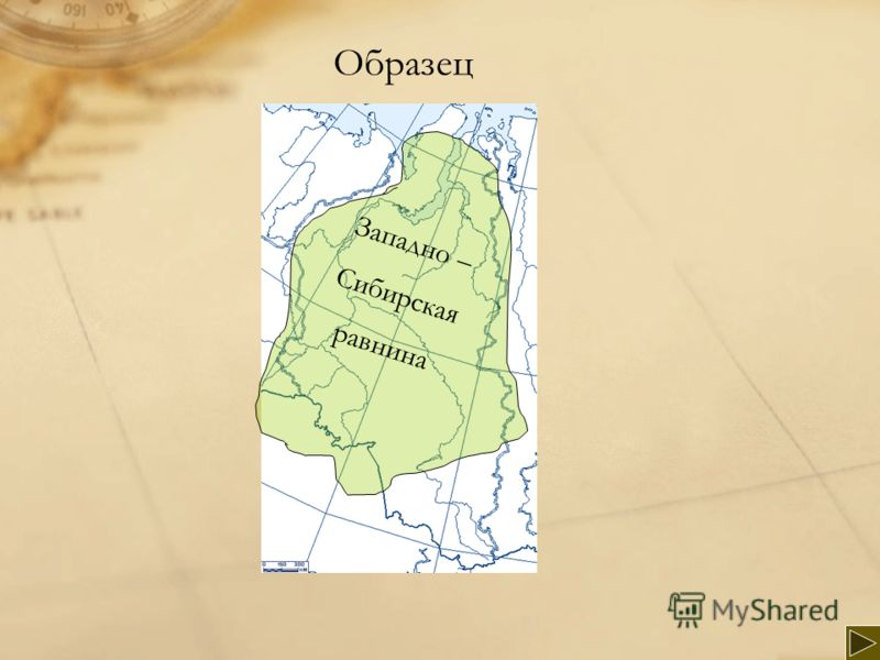 Западно – Сибирская равнина Образец