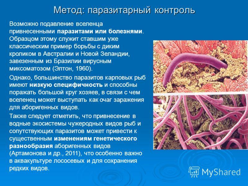 Метод: паразитарный контроль Возможно подавление вселенца привнесенными паразитами или болезнями. Образцом этому служит ставшим уже классическим пример борьбы с диким кроликом в Австралии и Новой Зеландии, завезенным из Бразилии вирусным миксоматозом