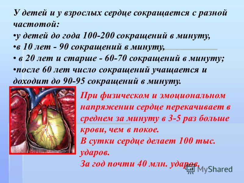 У детей и у взрослых сердце сокращается с разной частотой: у детей до года 100-200 сокращений в минуту, в 10 лет - 90 сокращений в минуту, в 20 лет и старше - 60-70 сокращений в минуту; после 60 лет число сокращений учащается и доходит до 90-95 сокра
