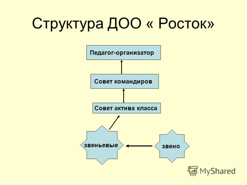 Структура ДОО « Росток» звено звеньевые Совет актива класса Совет командиров Педагог-организатор