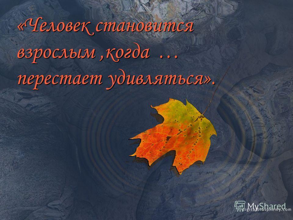 в произведениях «Герой-подросток Елены Габовой » «Человек становится взрослым,когда … перестает удивляться».