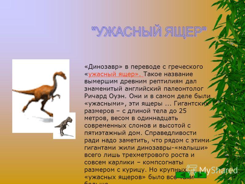 ДИНОЗАВРЫ динозавры