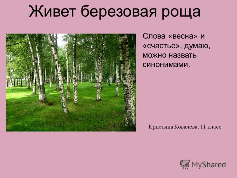 Живет березовая роща Слова «весна» и «счастье», думаю, можно назвать синонимами. Кристина Ковалева, 11 класс