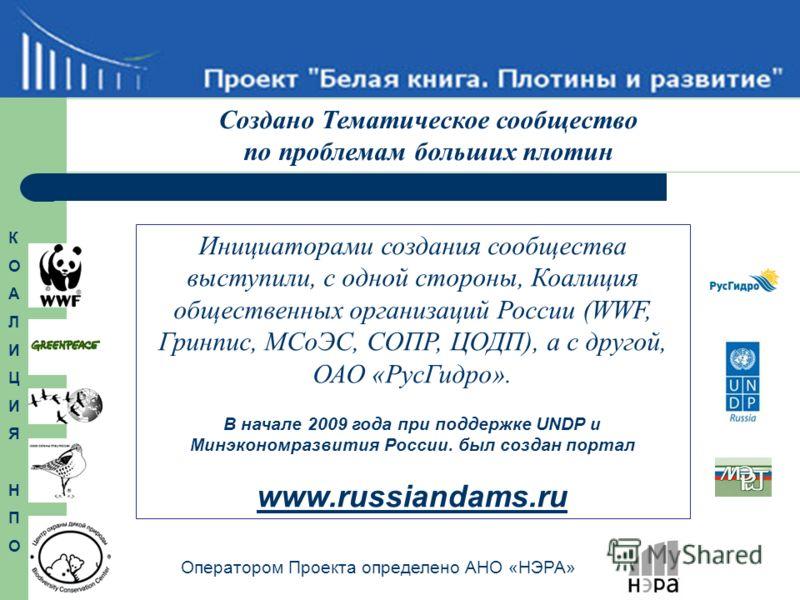 Инициаторами создания сообщества выступили, с одной стороны, Коалиция общественных организаций России (WWF, Гринпис, МСоЭС, СОПР, ЦОДП), а с другой, ОАО «РусГидро». В начале 2009 года при поддержке UNDP и Минэкономразвития России. был создан портал w
