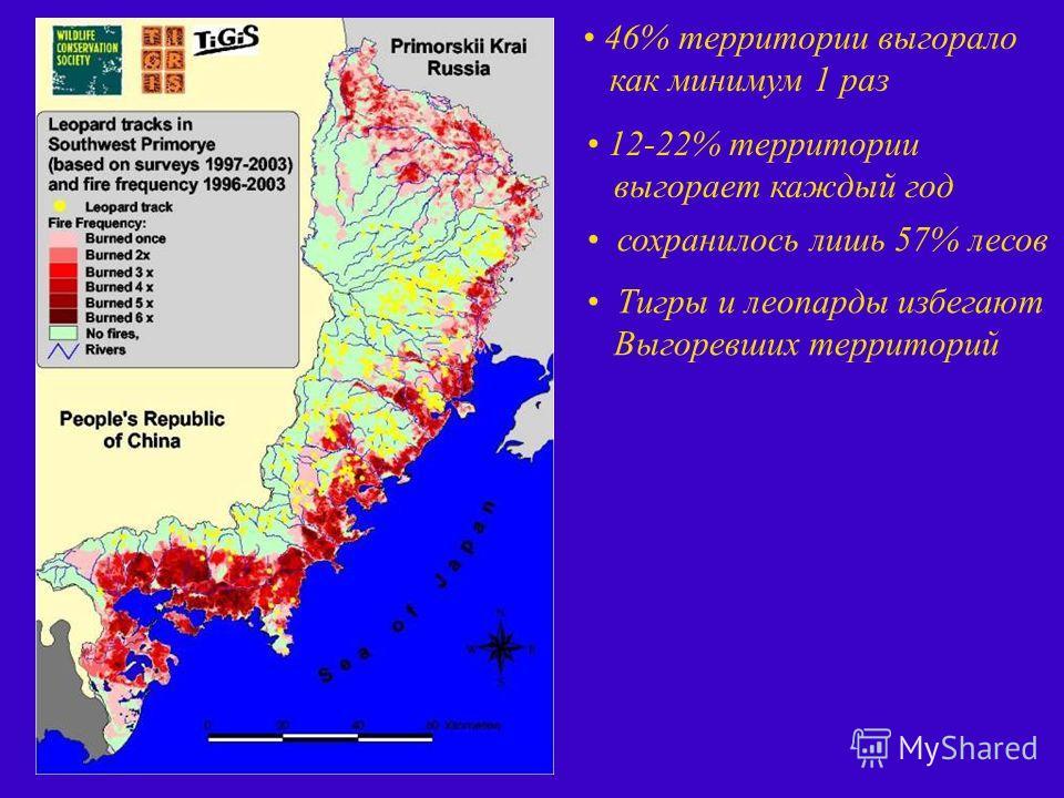 46% территории выгорало как минимум 1 раз 12-22% территории выгорает каждый год сохранилось лишь 57% лесов Тигры и леопарды избегают Выгоревших территорий