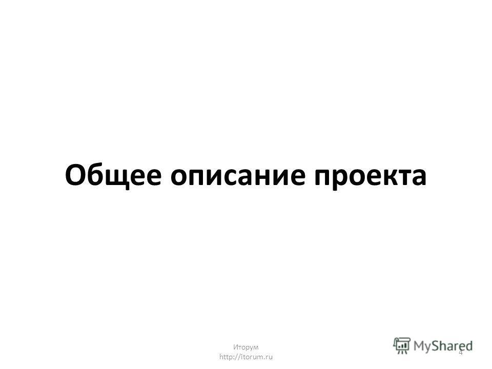 Общее описание проекта Иторум http://itorum.ru 4