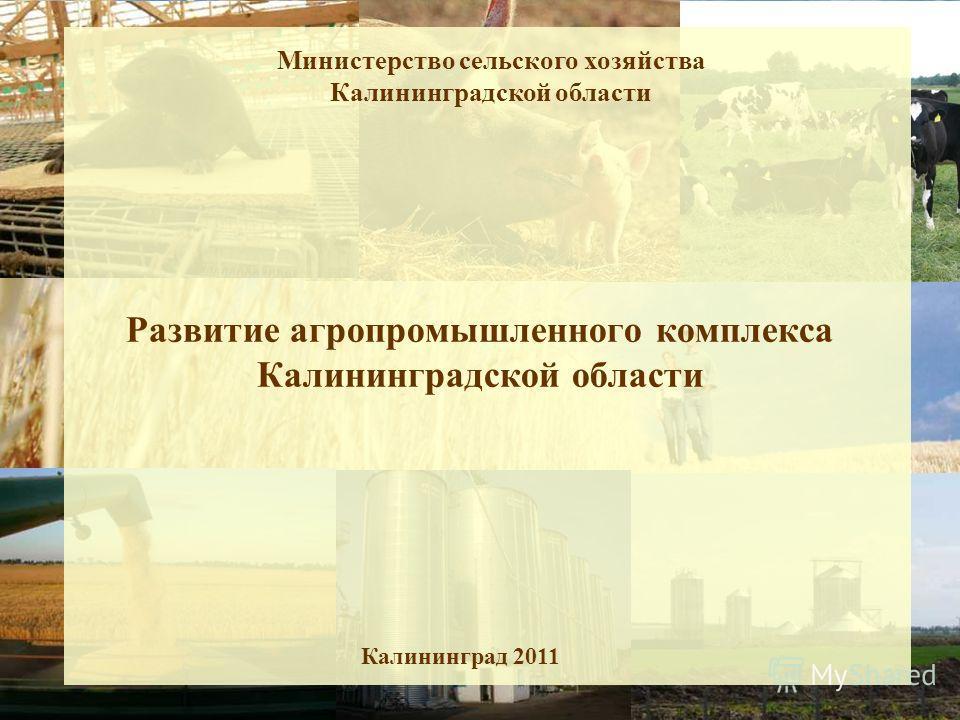 Развитие агропромышленного комплекса Калининградской области Калининград 2011 Министерство сельского хозяйства Калининградской области