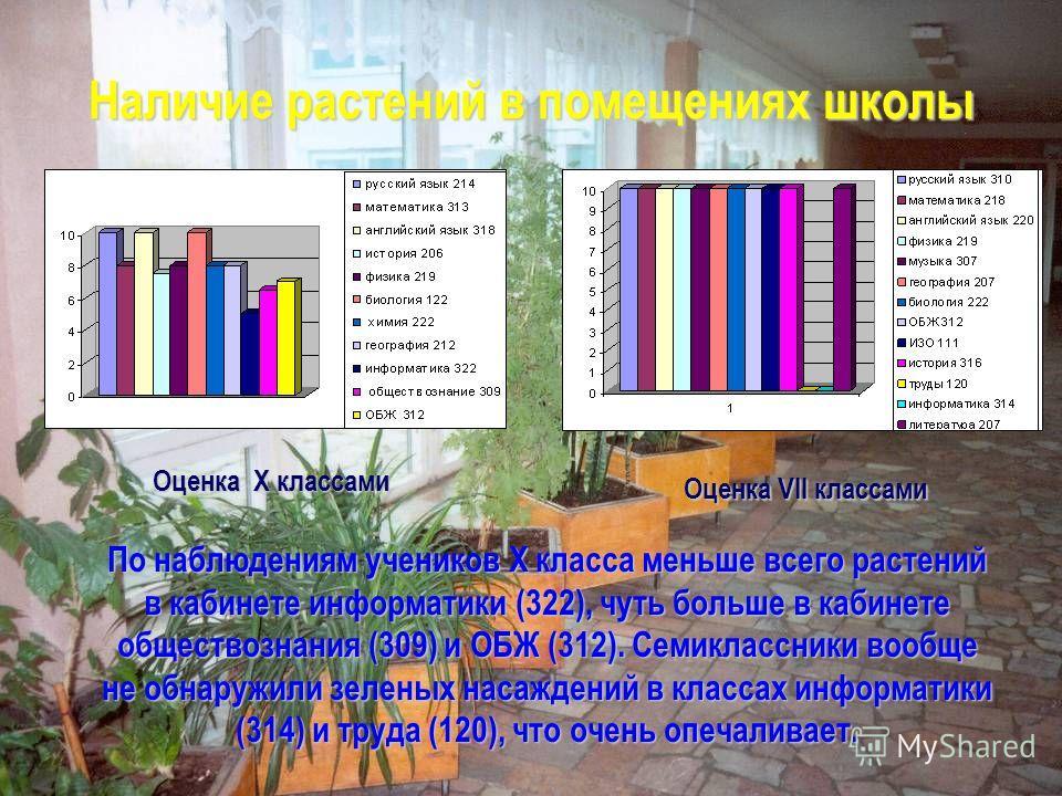 Наличие растений в помещениях школы Оценка X классами Оценка VII классами По наблюдениям учеников X класса меньше всего растений в кабинете информатики (322), чуть больше в кабинете обществознания (309) и ОБЖ (312). Семиклассники вообще не обнаружили