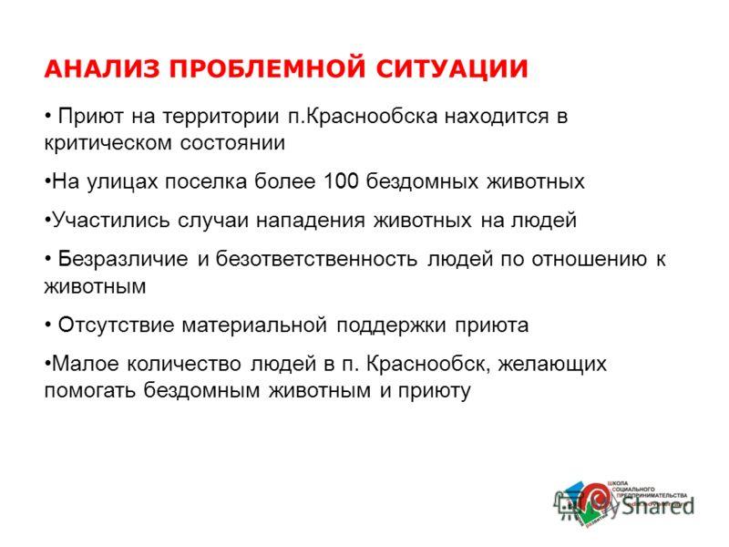 Приют на территории п.Краснообска находится в критическом состоянии На улицах поселка более 100 бездомных животных Участились случаи нападения животных на людей Безразличие и безответственность людей по отношению к животным Отсутствие материальной по