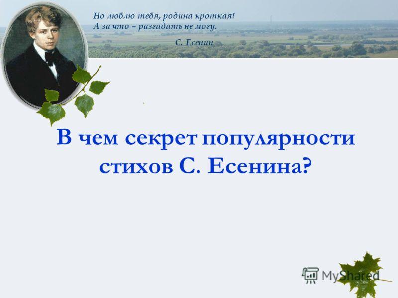 Но люблю тебя, родина кроткая! А за что – разгадать не могу. С. Есенин В чем секрет популярности стихов С. Есенина?
