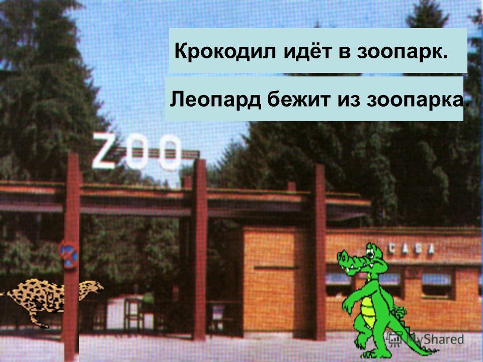 Крокодил идёт в зоопарк. Леопард бежит из зоопарка.