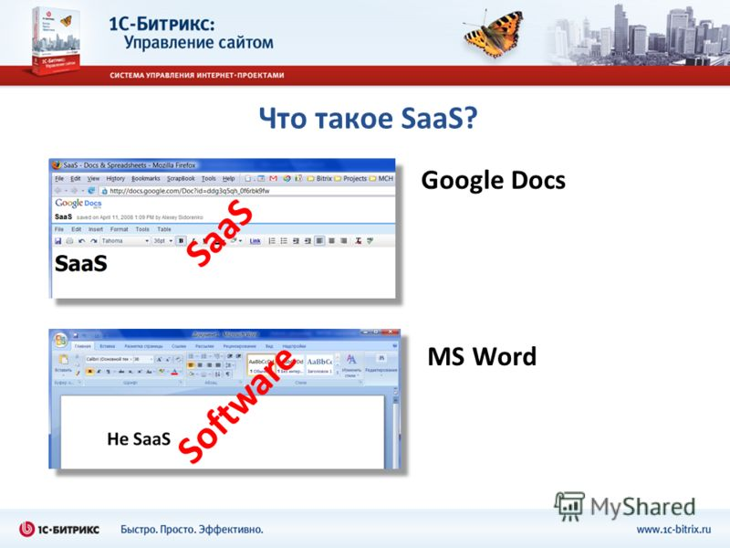 Что такое SaaS? Google Docs MS Word Software SaaS