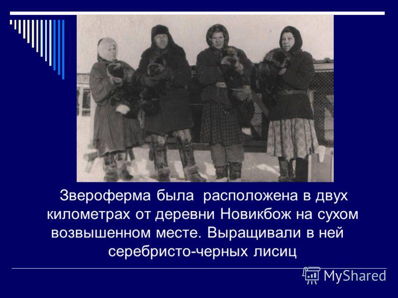 Звероферма в деревне Новикбож 1952-1972