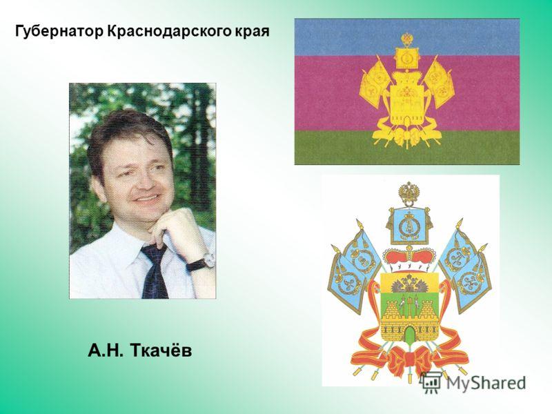 Губернатор Краснодарского края А.Н. Ткачёв
