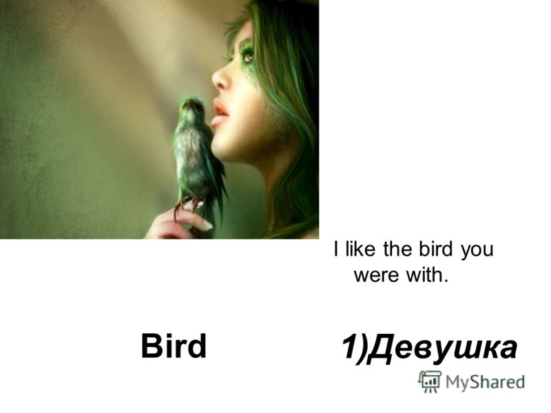 Bird I like the bird you were with. 1)Девушка