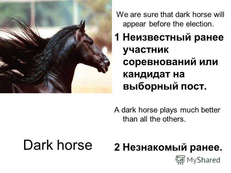 Dark horse We are sure that dark horse will appear before the election. 1 Неизвестный ранее участник соревнований или кандидат на выборный пост. A dark horse plays much better than all the others. 2 Незнакомый ранее.