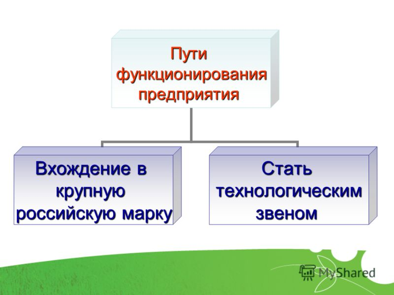 Путифункционированияпредприятия Вхождение в крупную российскую марку Статьтехнологическимзвеном
