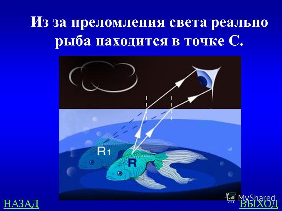 Геометрическая оптика 400 Укажите, в какой точке находится рыба в воде, если рыбак видит ее в точке А.