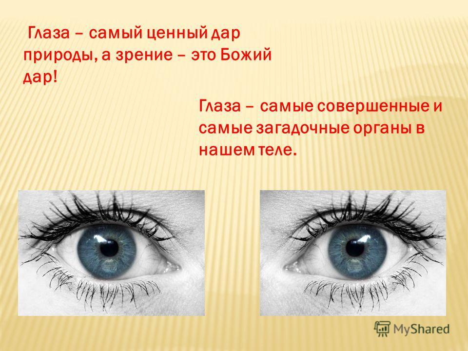 Глаза – самые совершенные и самые загадочные органы в нашем теле. Глаза – самый ценный дар природы, а зрение – это Божий дар!