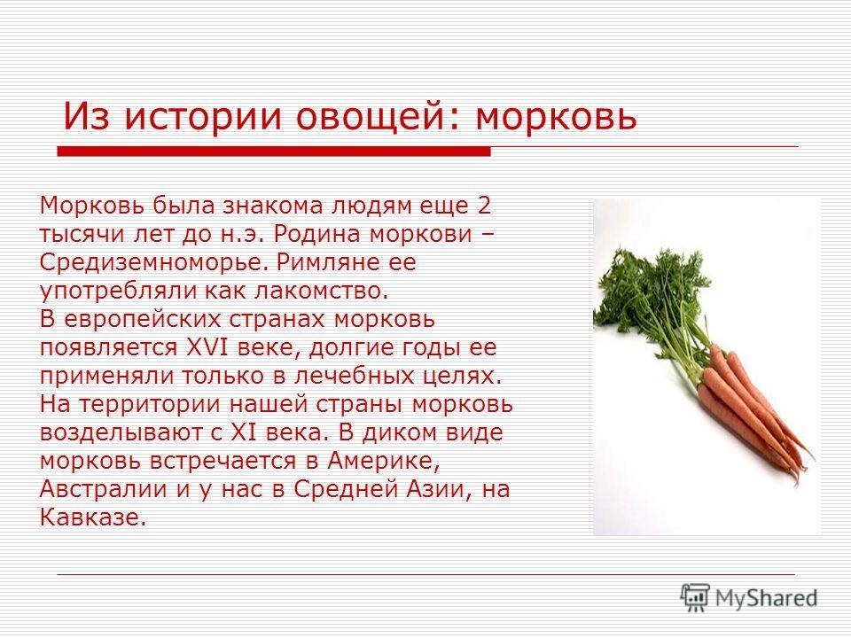 Из истории овощей: морковь Морковь была знакома людям еще 2 тысячи лет до н.э. Родина моркови – Средиземноморье. Римляне ее употребляли как лакомство. В европейских странах морковь появляется XVI веке, долгие годы ее применяли только в лечебных целях