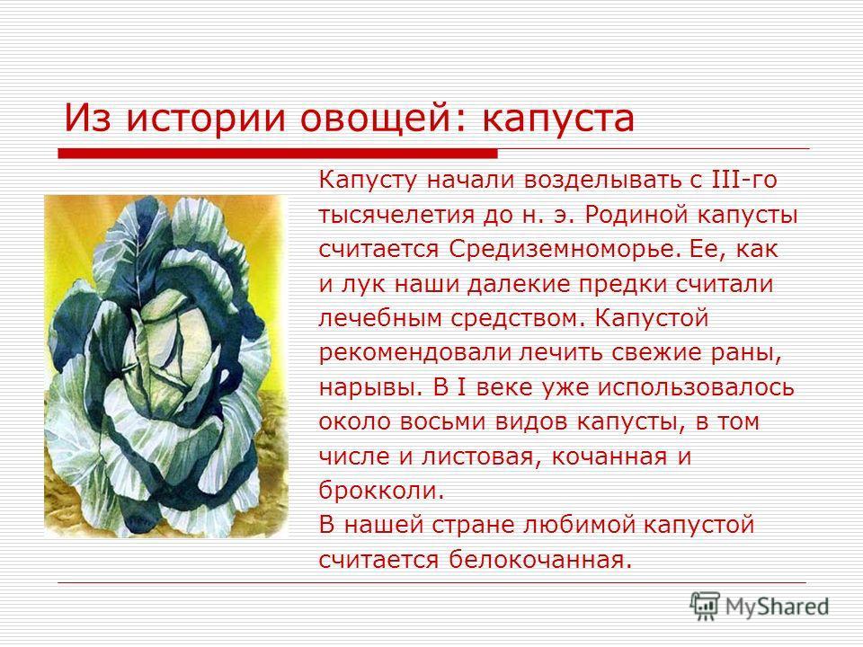 Из истории овощей: капуста Капусту начали возделывать с III-го тысячелетия до н. э. Родиной капусты считается Средиземноморье. Ее, как и лук наши далекие предки считали лечебным средством. Капустой рекомендовали лечить свежие раны, нарывы. В I веке у