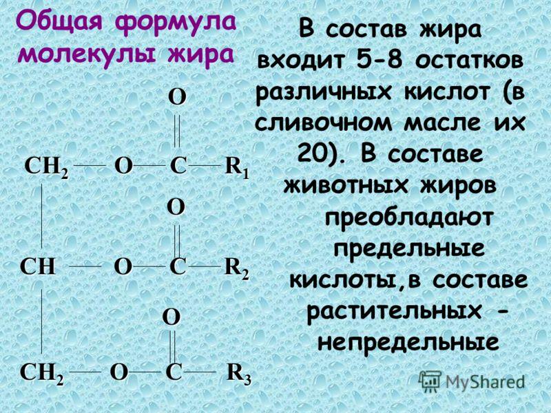 CH O C R 2 CH 2 O C R 1 CH 2 O C R 3 OO O В состав жира входит 5-8 остатков различных кислот (в сливочном масле их 20). В составе животных жиров преобладают предельные кислоты,в составе растительных - непредельные Общая формула молекулы жира