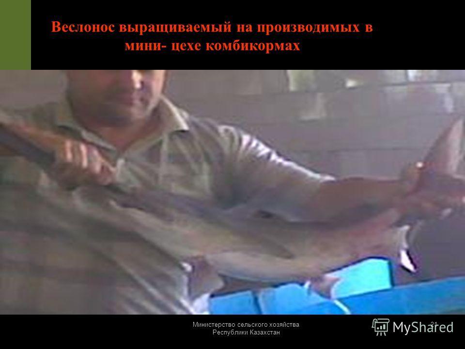 Министерство сельского хозяйства Республики Казахстан 20 Экструдированная кормовая добавка