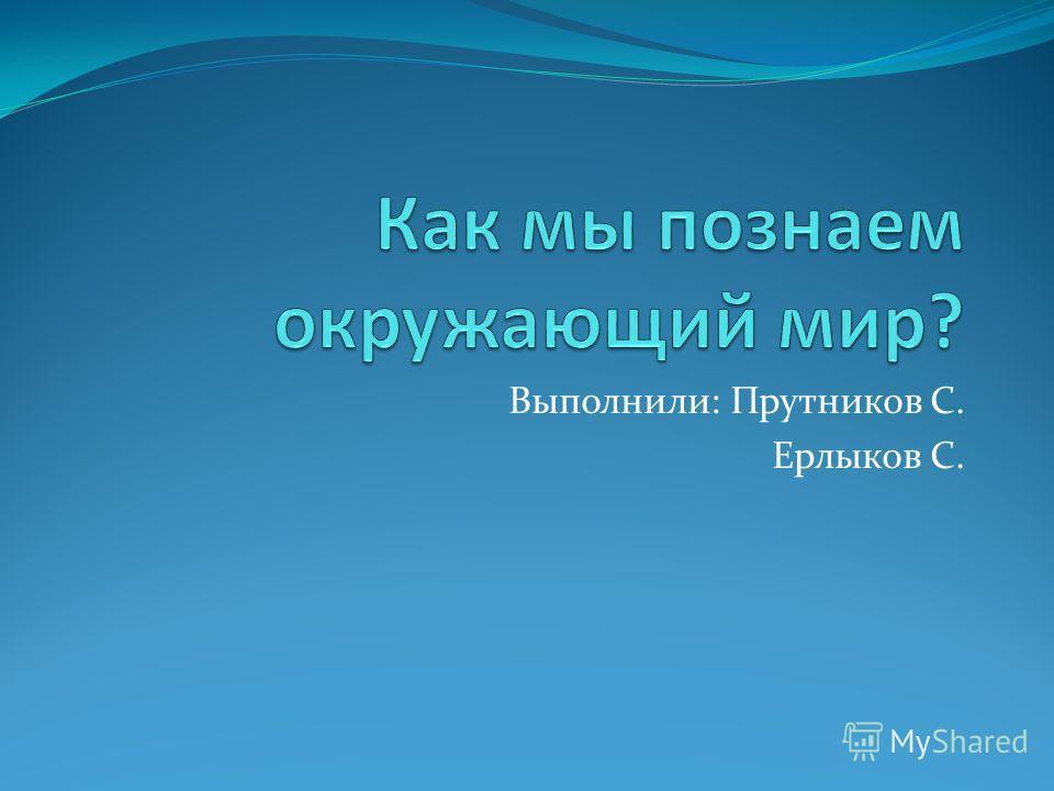 Выполнили: Прутников С. Ерлыков С.