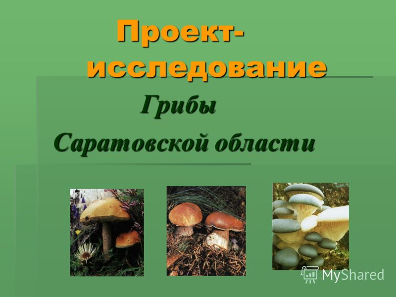 Проект- исследование Проект- исследование Грибы Грибы Саратовской области