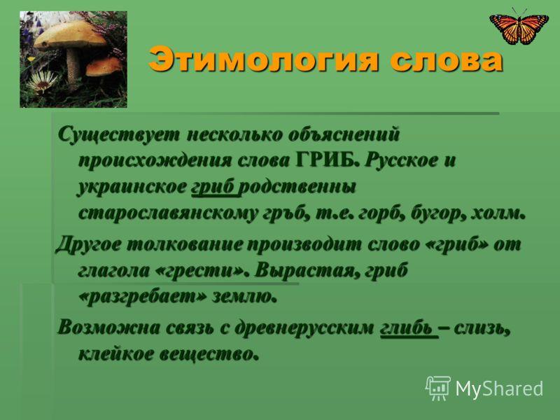 Этимология слова Этимология слова Существует несколько объяснений происхождения слова ГРИБ. Русское и украинское гриб родственны старославянскому гръб, т. е. горб, бугор, холм. Другое толкование производит слово « гриб » от глагола « грести ». Выраст