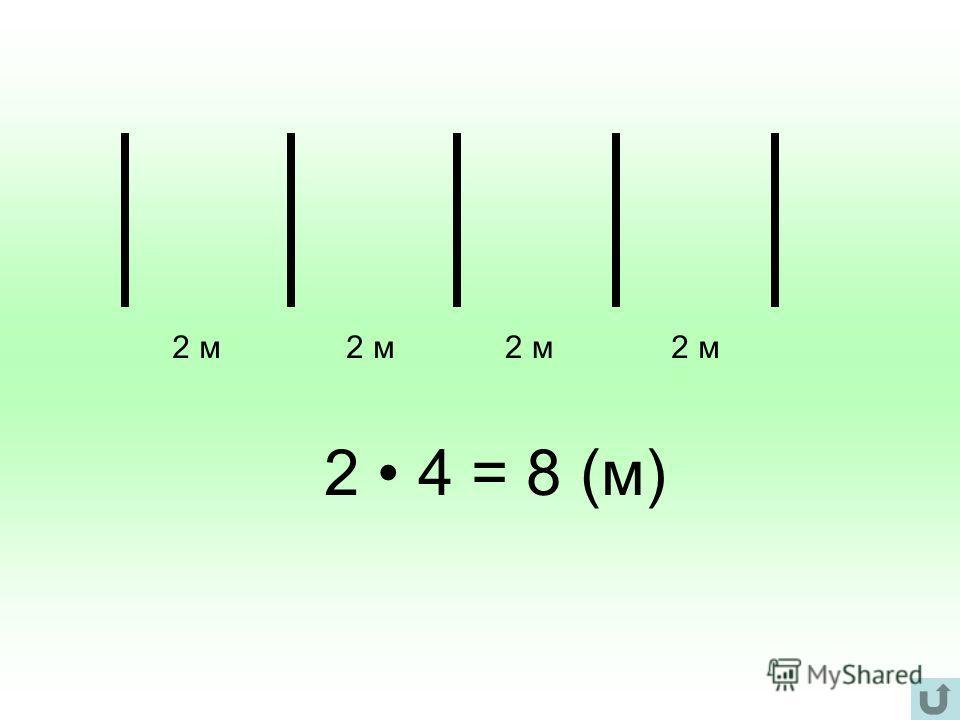 2 м 2 4 = 8 (м)