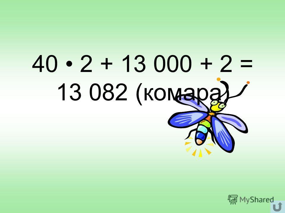 40 2 + 13 000 + 2 = 13 082 (комара)