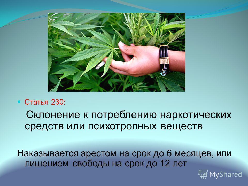 Статья 230: Склонение к потреблению наркотических средств или психотропных веществ Наказывается арестом на срок до 6 месяцев, или лишением свободы на срок до 12 лет