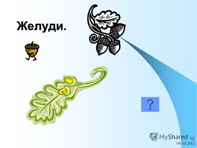 28.07.2012 12 Желуди.