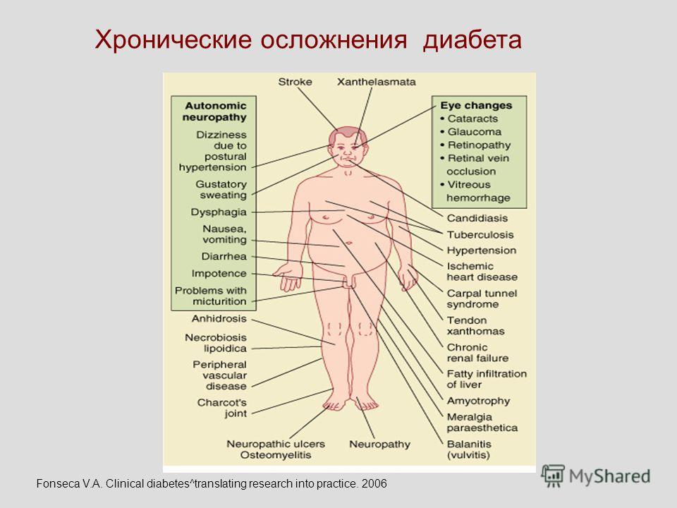 Хронические осложнения диабета Fonseca V.A. Clinical diabetes^translating research into practice. 2006
