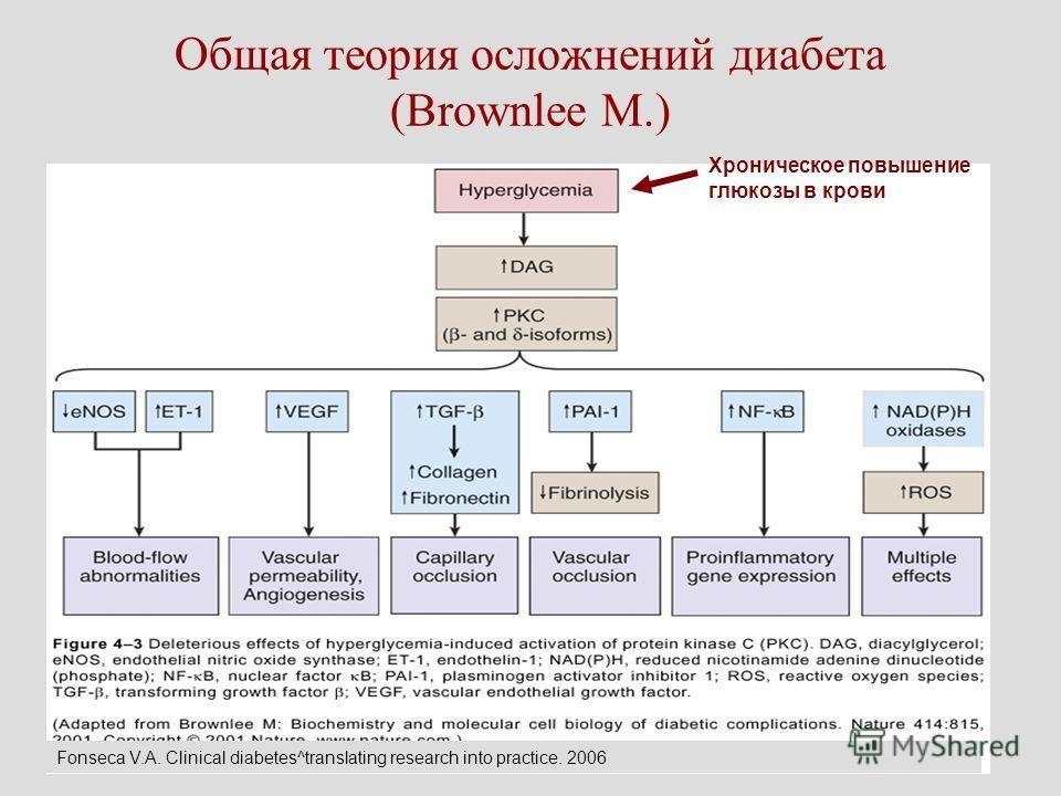 Общая теория осложнений диабета (Brownlee M.) Хроническое повышение глюкозы в крови Fonseca V.A. Clinical diabetes^translating research into practice. 2006