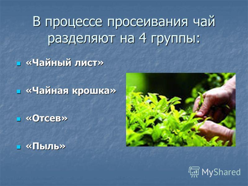 В процессе просеивания чай разделяют на 4 группы: «Чайный лист» «Чайный лист» «Чайная крошка» «Чайная крошка» «Отсев» «Отсев» «Пыль» «Пыль»