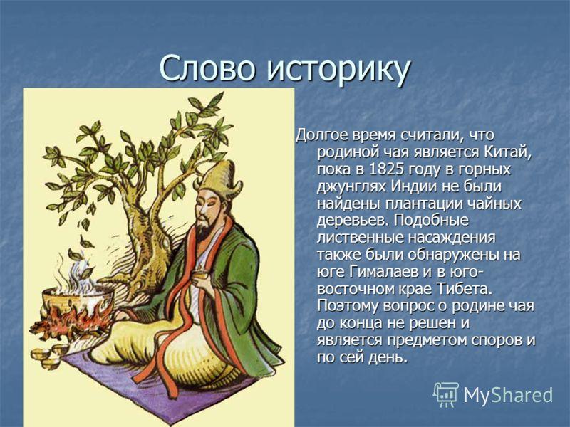 Слово историку Долгое время считали, что родиной чая является Китай, пока в 1825 году в горных джунглях Индии не были найдены плантации чайных деревьев. Подобные лиственные насаждения также были обнаружены на юге Гималаев и в юго- восточном крае Тибе