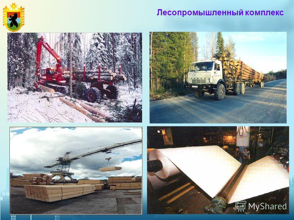 9 Лесопромышленный комплекс