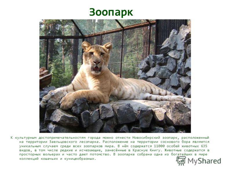 Зоопарк К культурным достопримечательностям города можно отнести Новосибирский зоопарк, расположенный на территории Заельцовского лесопарка. Расположение на территории соснового бора является уникальным случаем среди всех зоопарков мира. В нём содерж