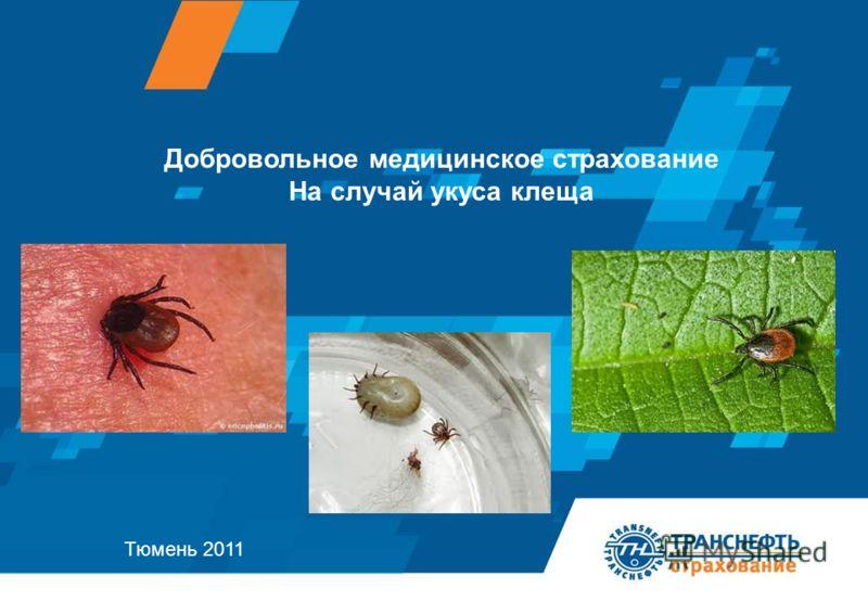 Добровольное медицинское страхование На случай укуса клеща Тюмень 2011